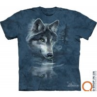 ch_WOLF_REFLECTION_10_1850.jpg
